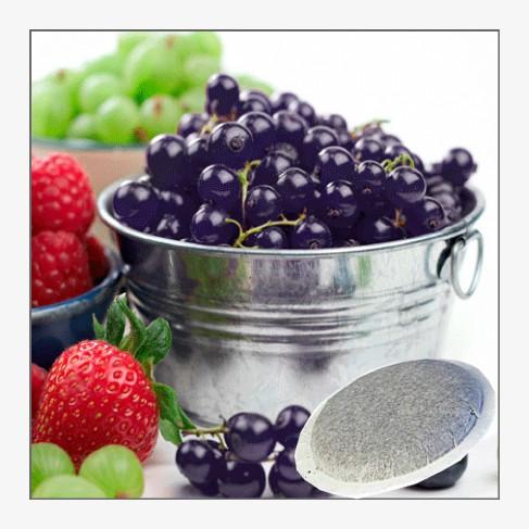 cialde-fructe-de-padure